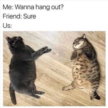 Blobs is listed (or ranked) 1 on the list 26 Memes That Only Best Friends Can Relate To