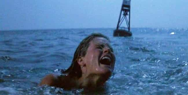 Spielberg Had A Personal... is listed (or ranked) 2 on the list Surprising Facts, Small Details, And Trivia Most People Don't Know About 'Jaws'