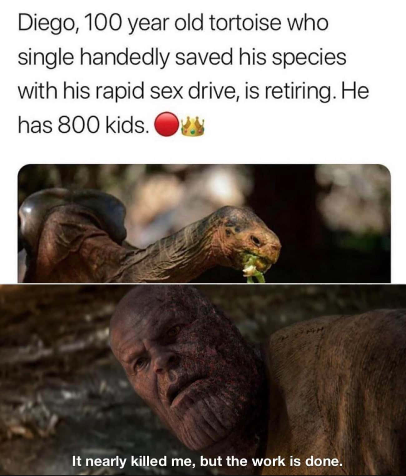 Rest, Mighty King is listed (or ranked) 3 on the list 27 Memes That Prove Thanos Is The Funniest Character In The Entire MCU