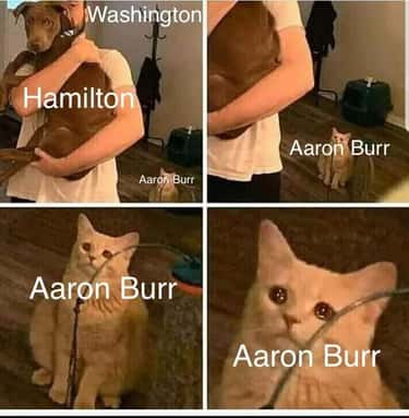 What About Burr, Sir? is listed (or ranked) 1 on the list 22 Aaron Burr Memes For Hamilton Fans Who Are Willing To Wait For It