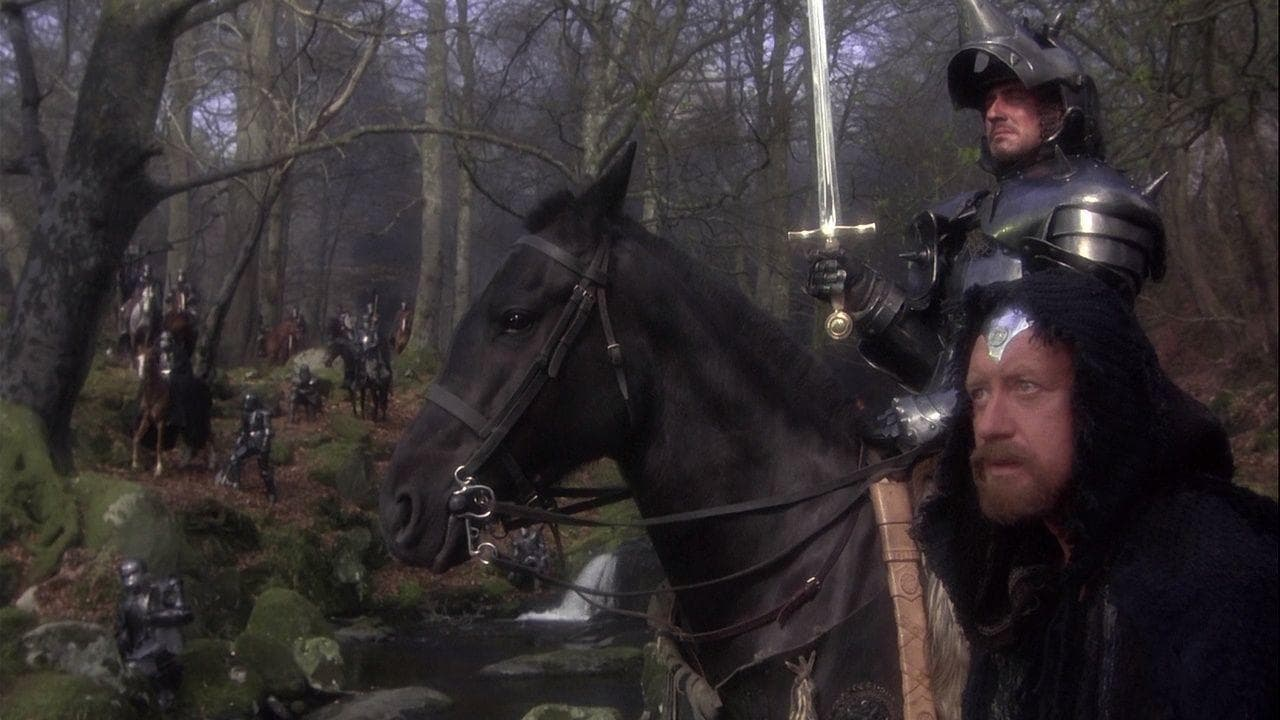 Random Dumbest Things Pop Culture Has Us Believe About Medieval Knights