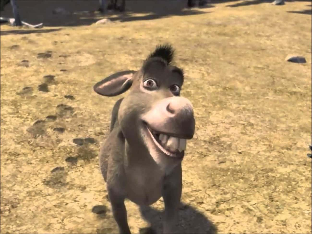 Donkey Was The Real MVP is listed (or ranked) 2 on the list 23 Weird 'Shrek' Thoughts That Actually Make A Good Point
