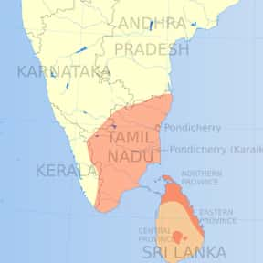 Tamil Language is listed (or ranked) 23 on the list The Best Language to Learn