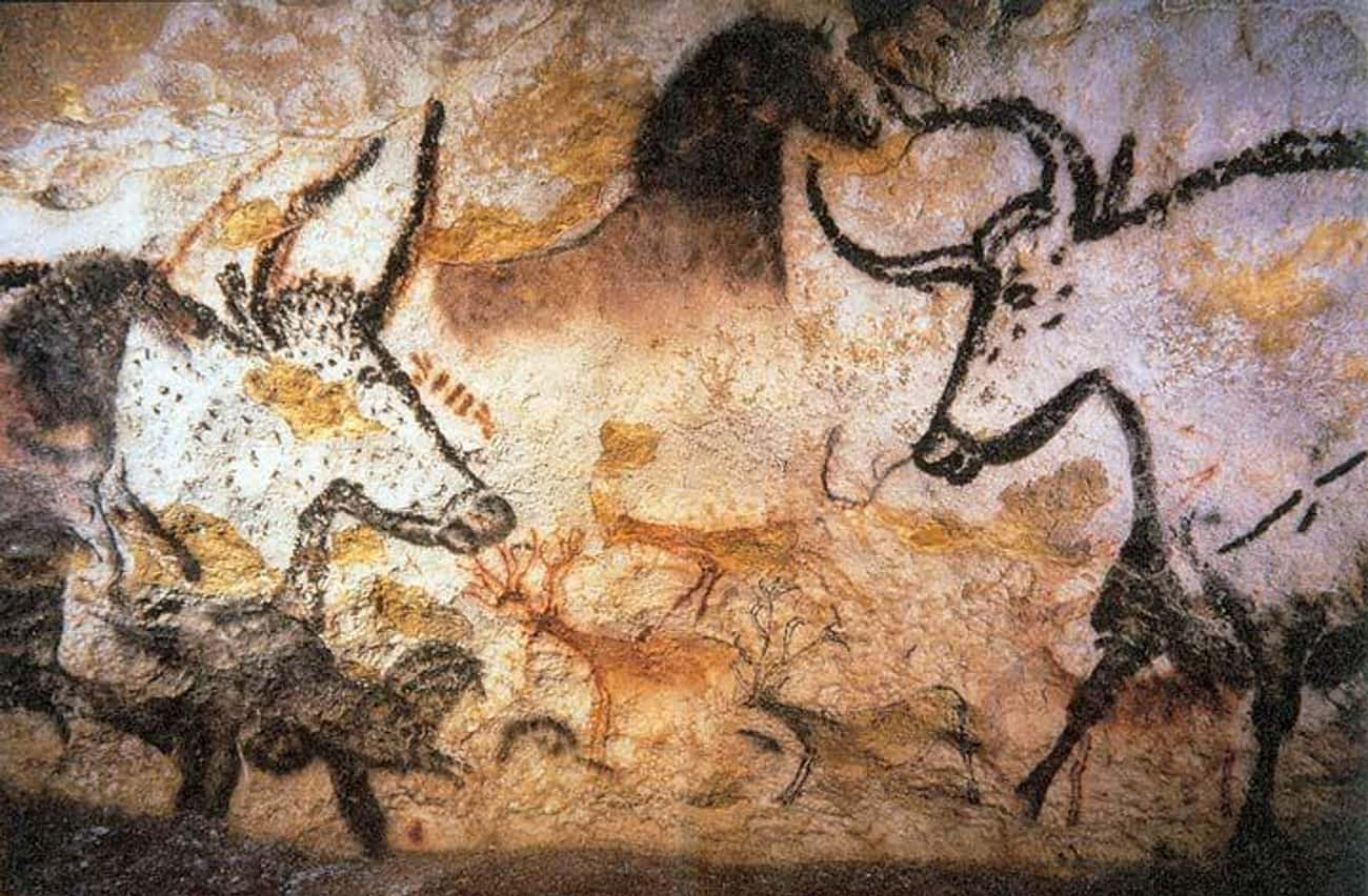 Teenagers Found Important Cave Paintings When They Followed Their Dog Into A Hole In The Ground
