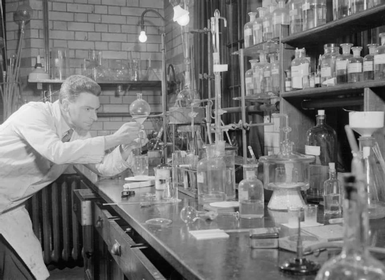 A Lab Tech Accidentally Grew Penicillin In A Contaminated Bacteria Culture