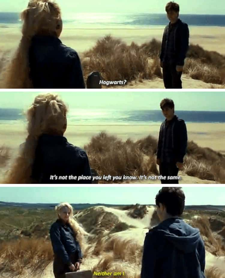 Luna And Harry Share A Moment After Dobby Passes (Deathly Hallows)