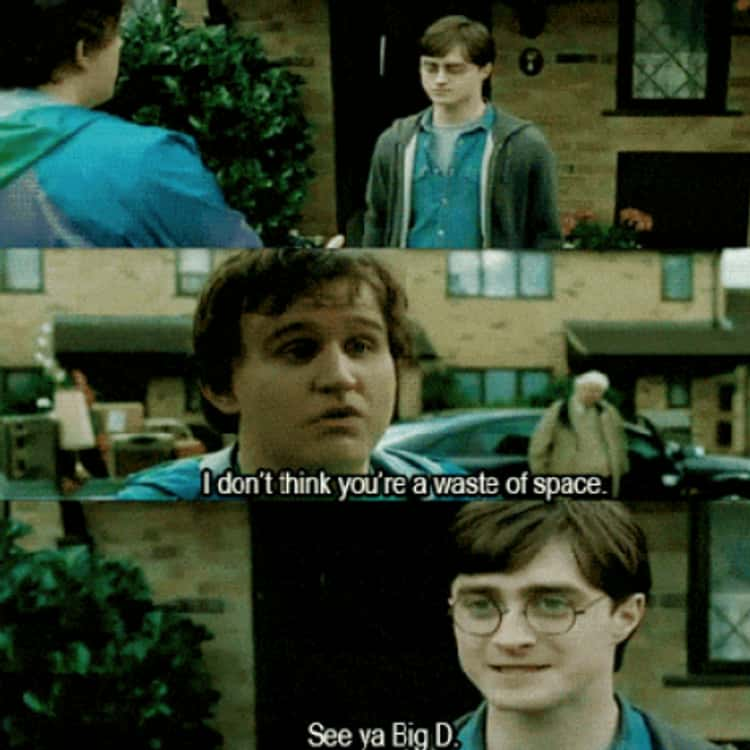 Dudley Tells Harry Potter He's Not A Waste Of Space (Deathly Hallows)