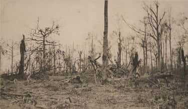 Daniel Daly Asked A Not-So-Rhetorical Question At The Battle Of Belleau Wood