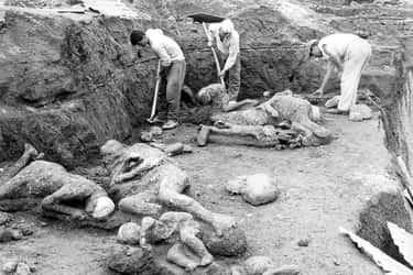 Excavations In Pompeii, 1961