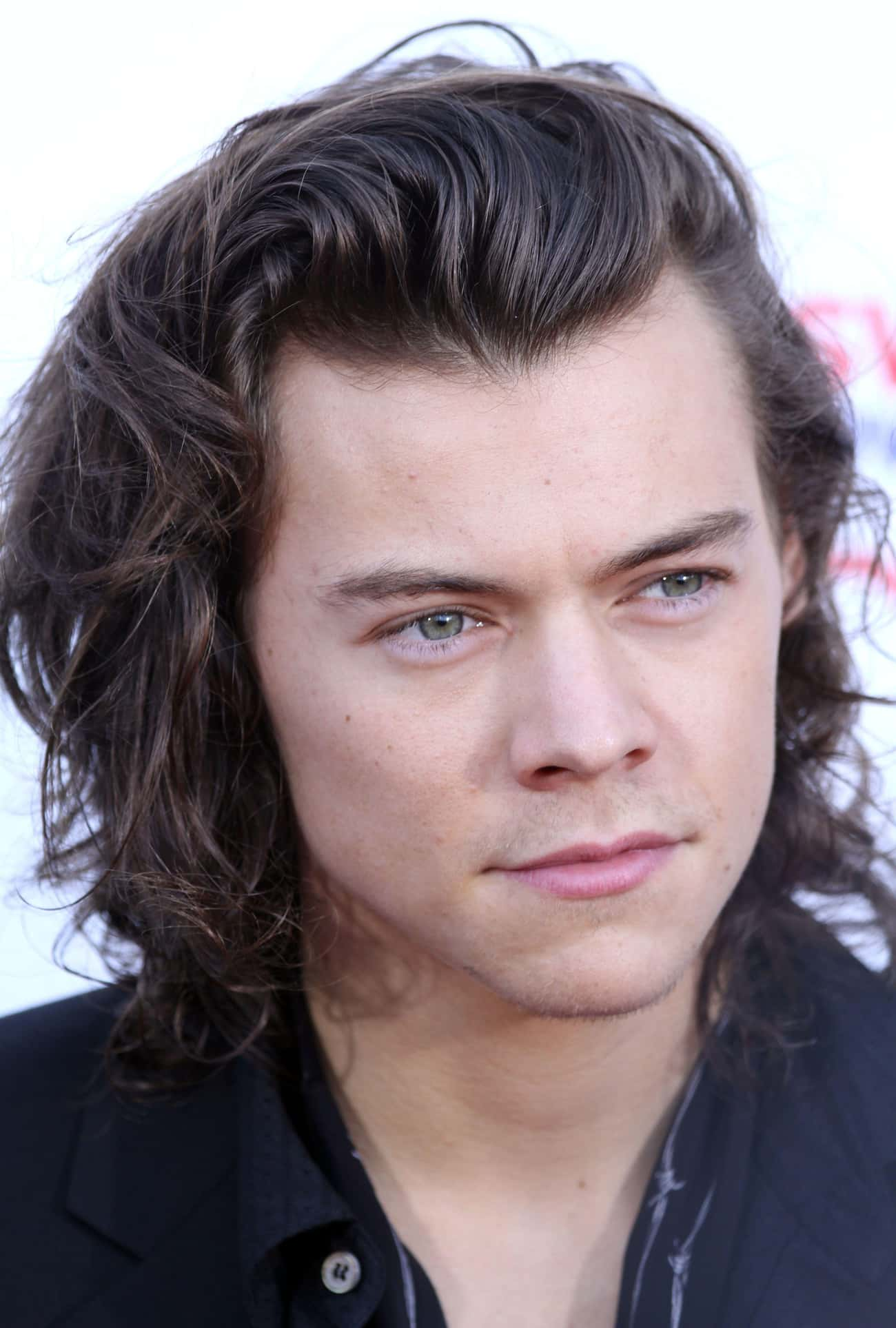 Harry Styles Is One Of The Most Famous Pop Stars In The UK