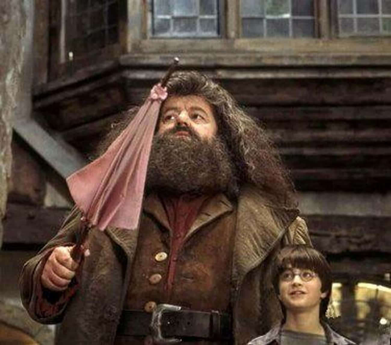 Dumbledore Repaired Hagrid's Wand And Transfigured It Into An Umbrella To Hide It