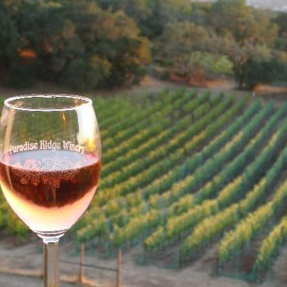 Paradise Ridge Winery on Random Best Wineries in Sonoma Valley