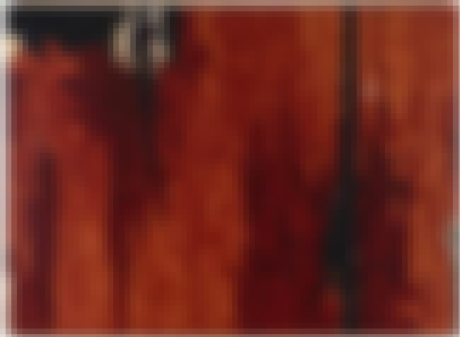 1941-R is listed (or ranked) 3 on the list Famous Clyfford Still Paintings