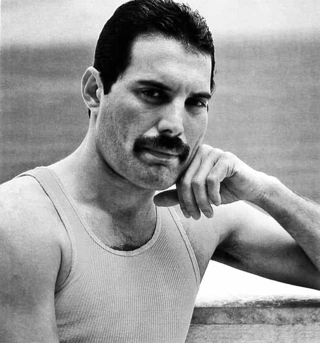 Freddie Mercury is listed (or ranked) 1 on the list Famous Gay People Who Died Of AIDS