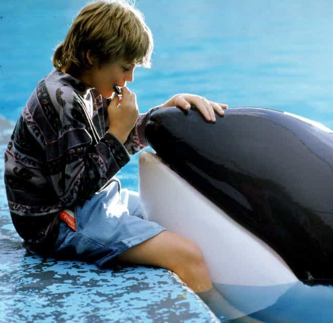Free Willy is listed (or ranked) 4 on the list Classic '90s Kids Movies You Forgot Are Actually Super Messed Up
