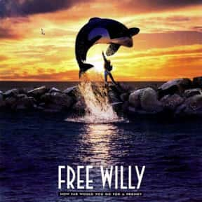 Free Willy is listed (or ranked) 25 on the list The Best Family Movies Rated PG