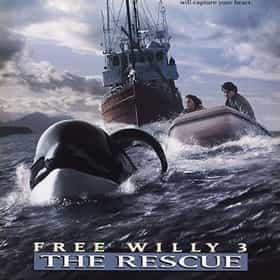Free Willy 3: The Rescue