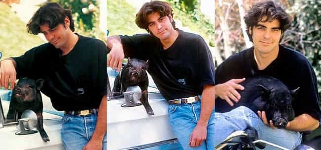 George Clooney is listed (or ranked) 4 on the list 15 Celebrities Who Have Pet Pigs