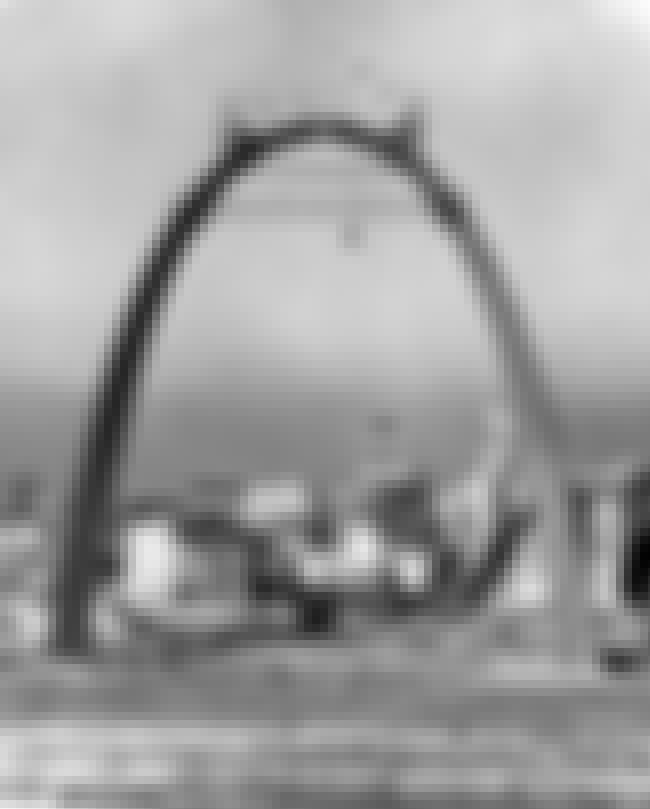 Gateway Arch is listed (or ranked) 3 on the list 18 Fascinating Photos of Historical Landmarks Under Construction