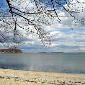 Calf Pasture Beach is listed (or ranked) 25 on the list The Best Beaches in New England