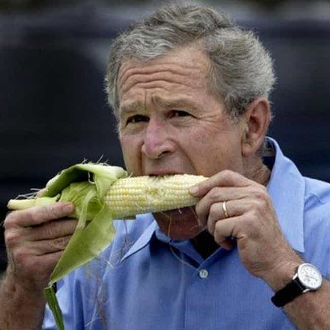 George W. Bush is listed (or ranked) 4 on the list American Politicians (Allegedly) In The Illuminati