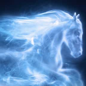 Ginny Weasley - Horse is listed (or ranked) 6 on the list EveryPatronus In'Harry Potter,' Ranked By How Much You Wish It Was Yours