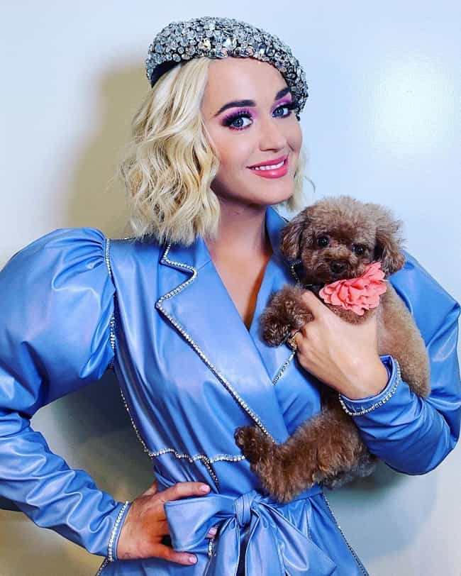 Katy Perry is listed (or ranked) 4 on the list Celebrities Who Can Relate To Your Middle Child Syndrome