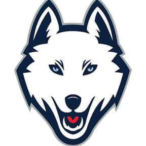 Connecticut Huskies men's bask is listed (or ranked) 21 on the list Basketball Teams with the Most Annoying Fans