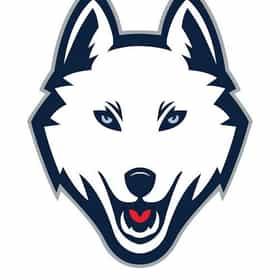 Connecticut Huskies men's basketball