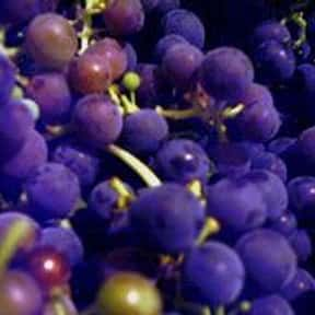 Grape is listed (or ranked) 19 on the list The Most Craveable Foods When You're Pregnant