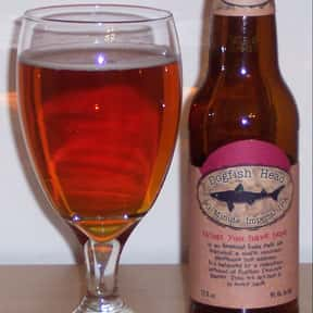 Dogfish Head 90 Minute IPA is listed (or ranked) 1 on the list The Best Dogfish Head Beers