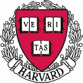 Harvard University is listed (or ranked) 2 on the list The Top Dream Colleges