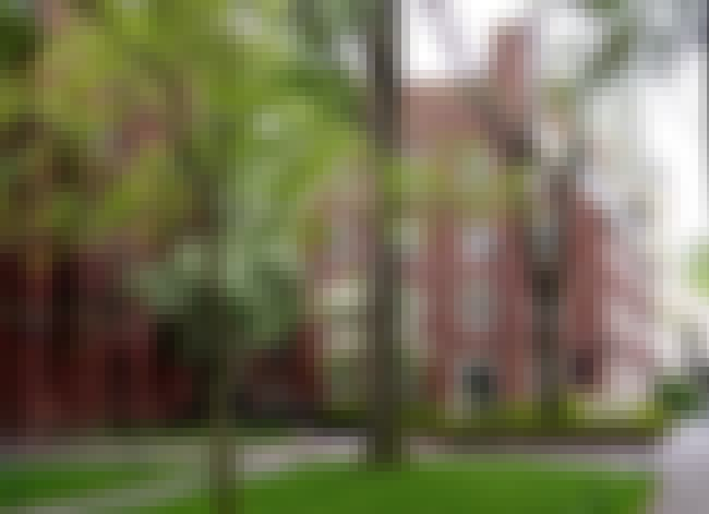 Harvard University is listed (or ranked) 5 on the list All Ivy League Schools