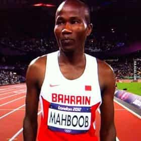Hasan Mahboob