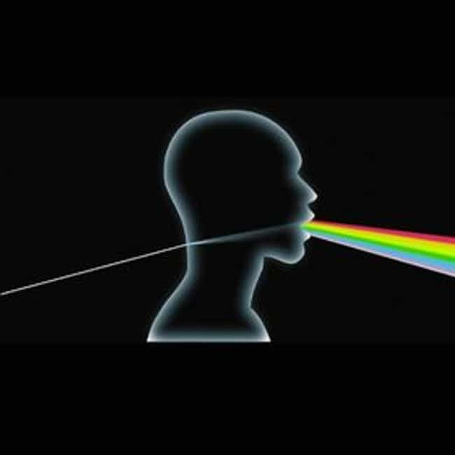 Dark Side of the Moon A Cappel... is listed (or ranked) 1 on the list Pink Floyd Parody Album Covers
