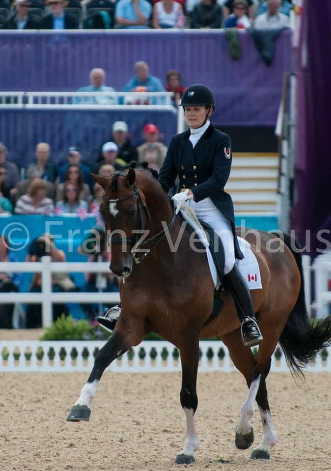 Ashley Holzer is listed (or ranked) 2 on the list Famous Equestrians from Canada