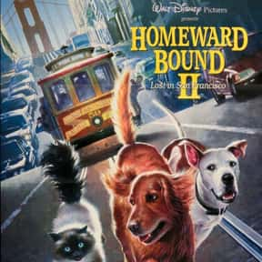 Homeward Bound II: Lost in San is listed (or ranked) 12 on the list The Greatest Dog Movies Of All Time