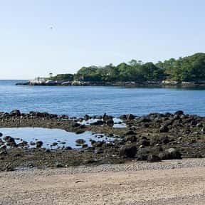 Gloucester is listed (or ranked) 17 on the list The Best Beaches in New England
