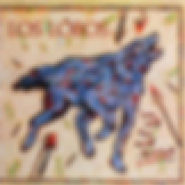 How Will the Wolf Survive? is listed (or ranked) 2 on the list The Best Los Lobos Albums of All Time