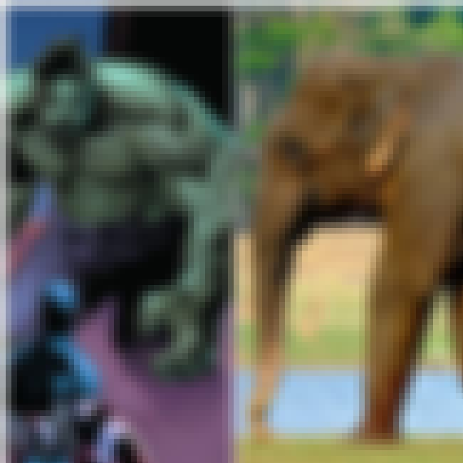 Hulk is listed (or ranked) 2 on the list 15 Pictures That Put The Enormous Marvel Characters In Perspective