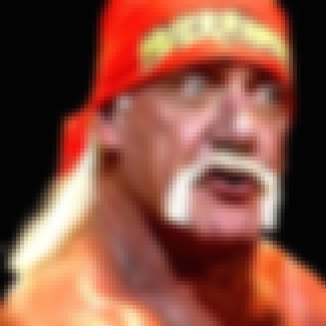 Hulk Hogan is listed (or ranked) 4 on the list 14 Pro Wrestlers Who've Done Porn