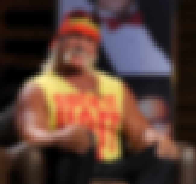 Hulk Hogan is listed (or ranked) 4 on the list List of Famous Wrestlers