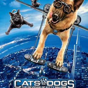 Cats & Dogs: The Revenge of Ki is listed (or ranked) 23 on the list The Best Cat Movies