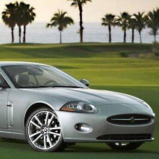 Image of Random Best Jaguars