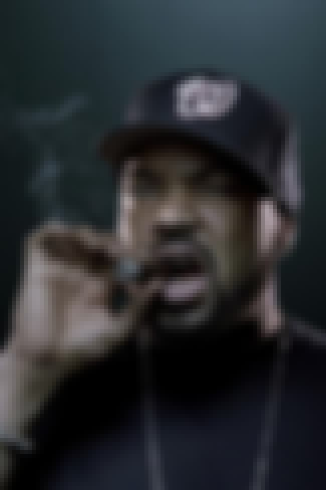 Ice Cube is listed (or ranked) 2 on the list 75+ Celebrities Who Smoke Cigars