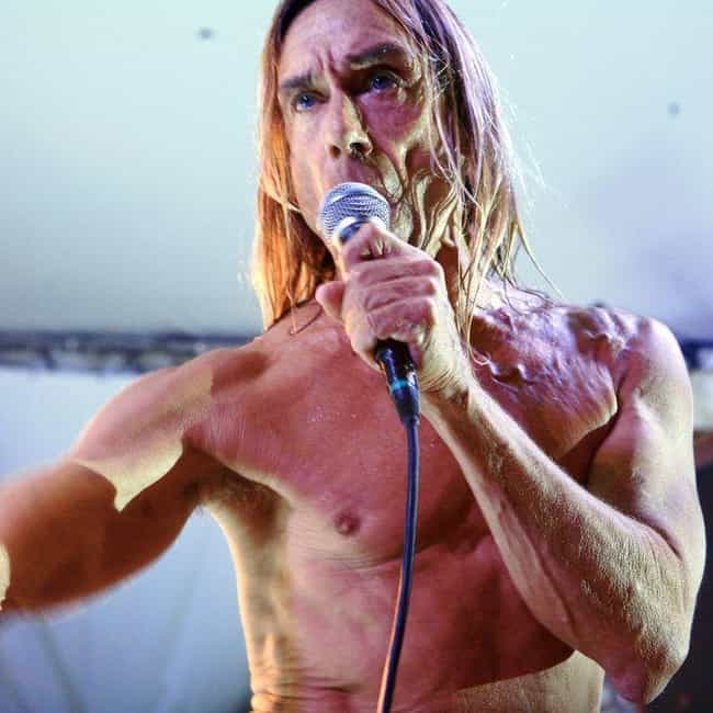 Iggy Pop is listed (or ranked) 3 on the list Famous Musicians Who Could Never Seem To Afford Shirts
