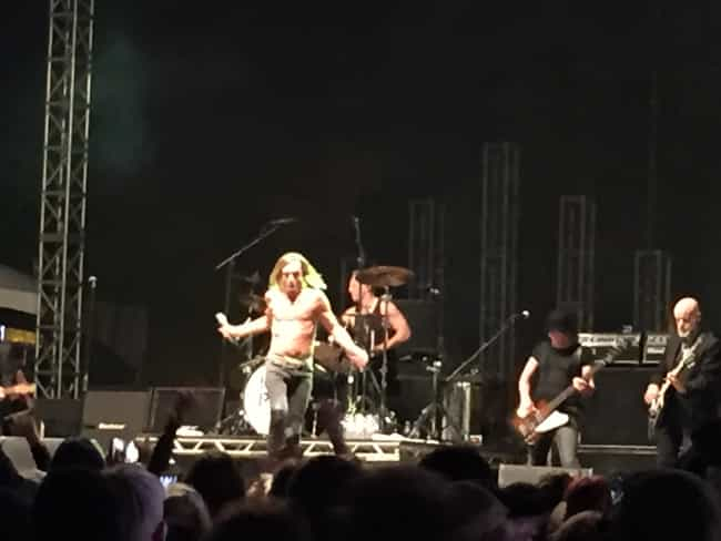 Iggy Pop is listed (or ranked) 4 on the list I Saw 100+ Bands in 2015 and Ranked Them