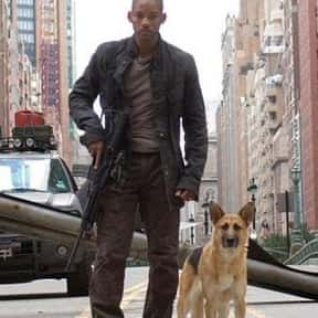I Am Legend is listed (or ranked) 8 on the list Action Movies On Netflix That Are Just Right For A Saturday Afternoon