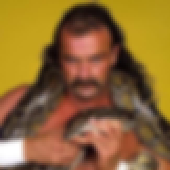 Jake Roberts is listed (or ranked) 1 on the list The Best (and Worst) Animal Based Gimmicks in Wrestling History
