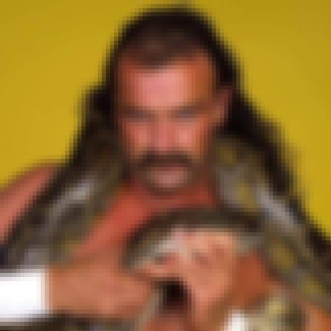 Jake Roberts is listed (or ranked) 2 on the list The Best Mustaches in Wrestling History